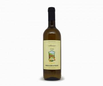"Vino bianco Pigato Az. Agricola ""Fontanavia"""